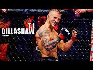 "TJ Dillashaw ""SNAKE"" - All UFC Highlights/Knockouts/Trainingsᴴᴰ"