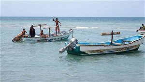 Yemen fishermen hit jackpot with million-dollar find in whale's belly