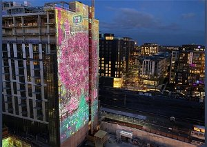 A Massive 3-D Cherry Blossom Projection Will Light Up Northeast DC Tonight and Tomorrow