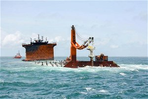 Wildlife deaths blamed on ship disaster mount in Sri Lanka