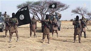 Breaking: 5,000 persons displaced, as Boko Haram hits in Adamawa