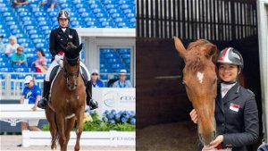 Equestrian-Singapore out of dressage after horse suffers freak injury