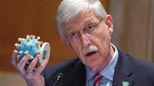 NIH Director Shredded Over Risky Research In Wuhan After CNN Interview Goes Sideways