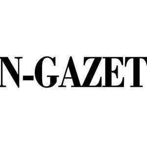 sungazette.com
