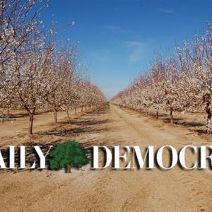 Daily Democrat