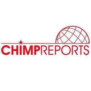 Chimp Reports