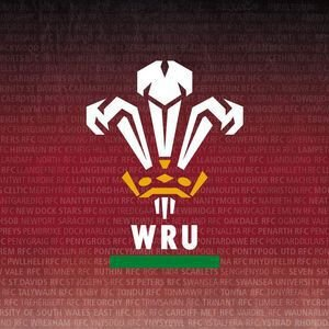 Welsh Rugby Union | Wales & Regions